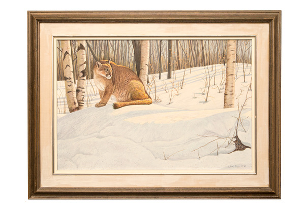 Original oil paintings   cougar in winter   clive kay bio on back  750%28web%29